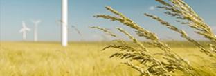 Landbrugsregnskab